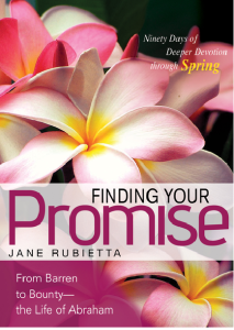 Finding your Promise